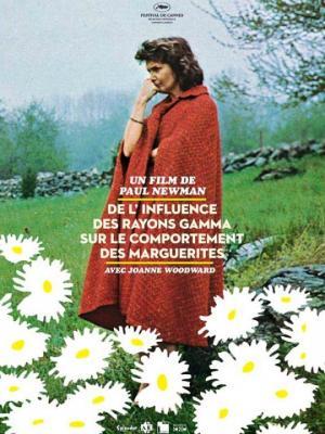 Affiche du film - marguerites