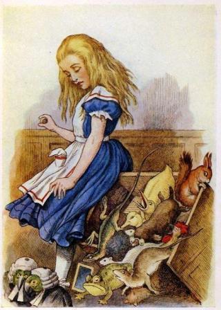 Alice au tribunal