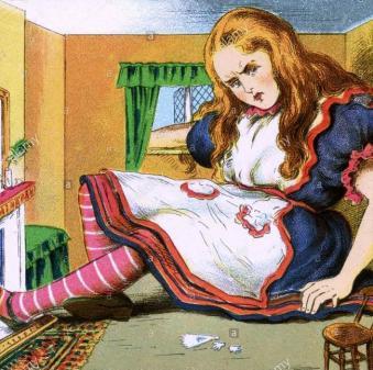 Alice dans la maison de lapin