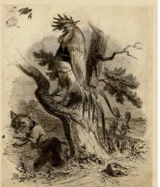 Coq et le Renard de La Fontaine