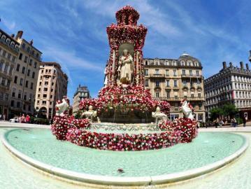 Place des Jacobins - Roses