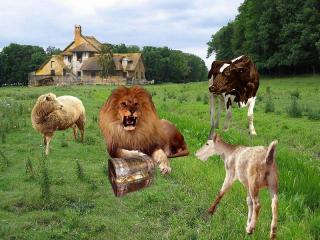 Le lion et ses trois vassales