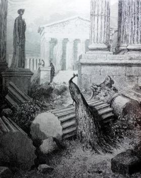 Le Paon et Junon - Gustave Doré